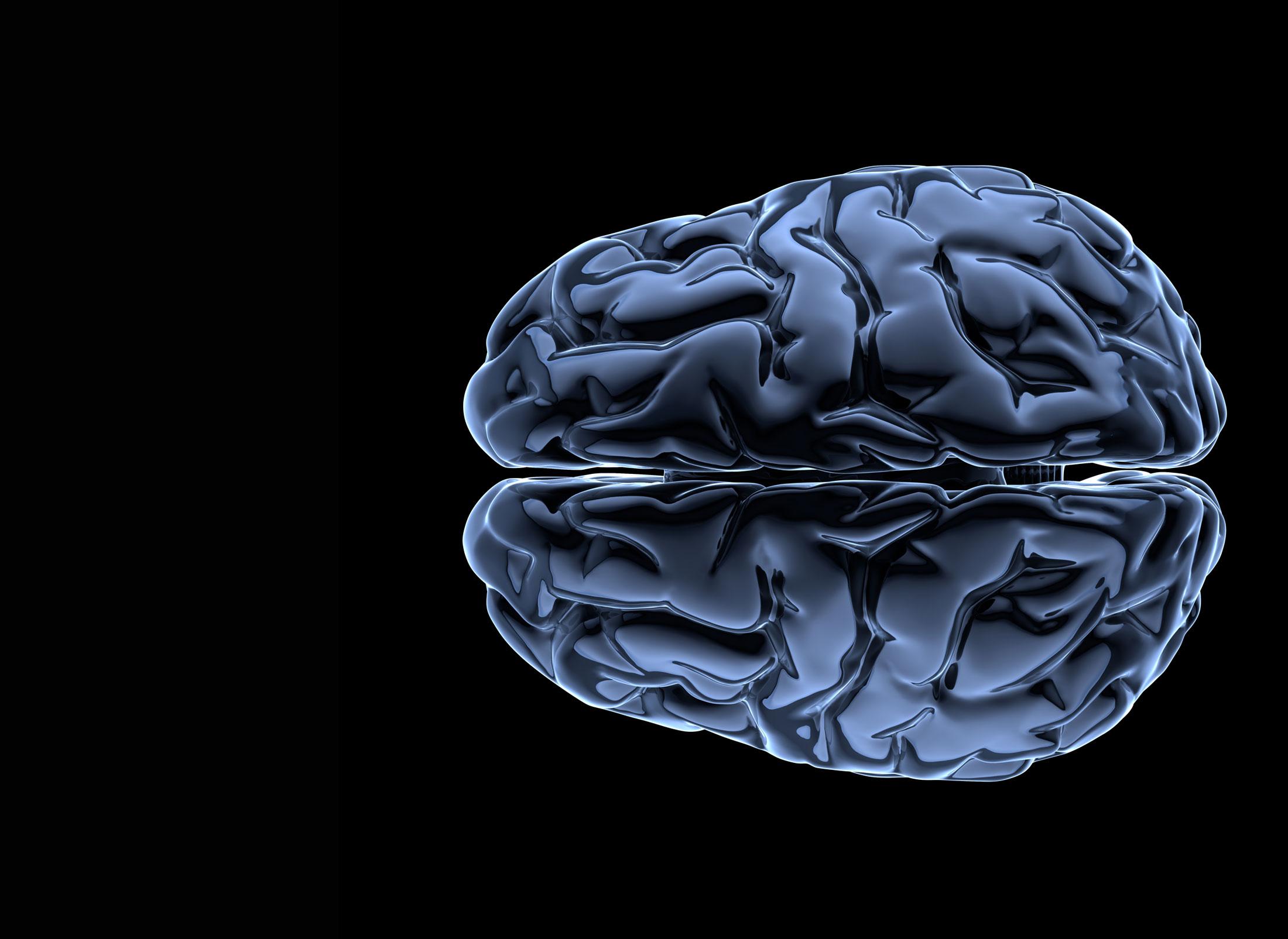 Gehirn mit viel Denkfähigkeit, Esprit und Grips